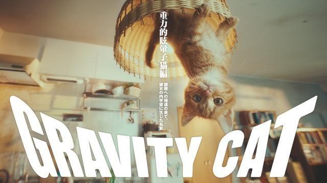 あの「GRAVITY DAZE」の世界観が、まさかの実写化! 発売記念動画「GRAVITY CAT 重力的眩暈子猫編」公開!