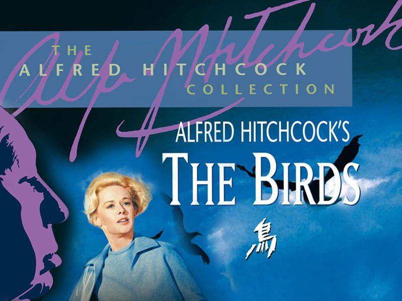 『鳥 (字幕版)』