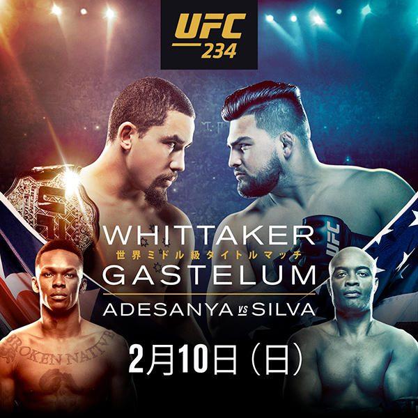 20190128-UFC234.jpg