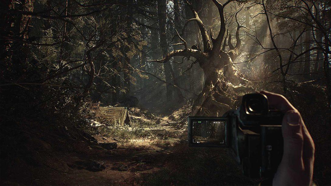 深い森をさまよう恐怖、唯一の仲間は犬──『ブレア・ウィッチ 日本語版』プレイレビュー!