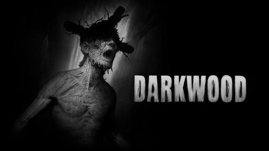 不気味な森からの脱出を目指す2D見下ろし型サバイバルホラー『Darkwood』本日9月2日発売!