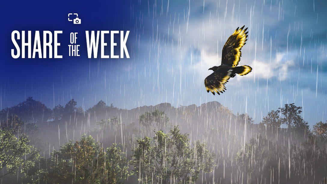 「雨」をテーマに、世界中から届いたキャプチャを厳選して公開!【Share of the Week】