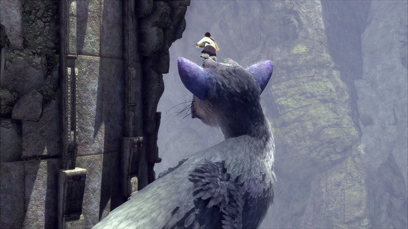 20161118-trico-06.png